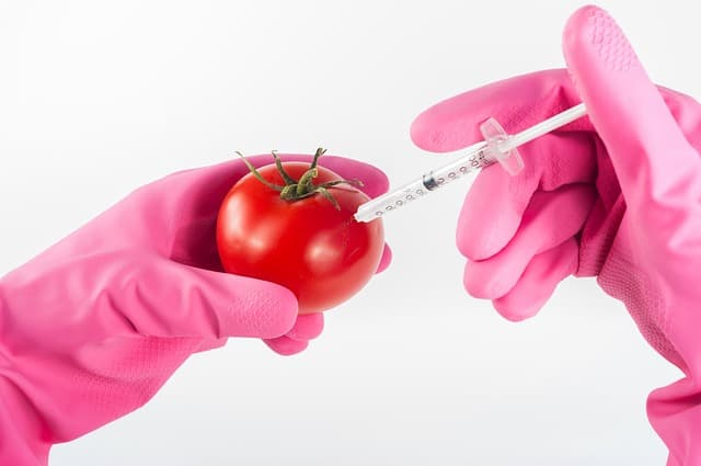 putting needle into tomato